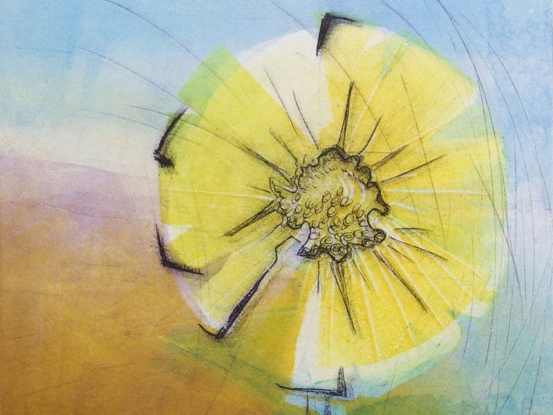 Turn off the News, Tune in to Nature - monoprint by Cynthia Rand-Thompson