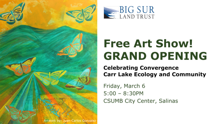 Celebrating Convergence - Carr Lake Ecology and Community - Big Sur Land Trust + CSUMB City Center Salinas (inside the National Steinbeck Center)